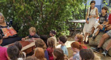 Community Helena River Steiner School
